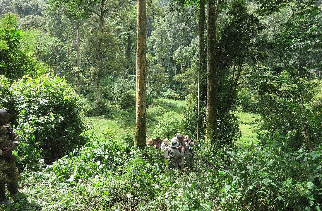 Gorilla Trackers Group Photo