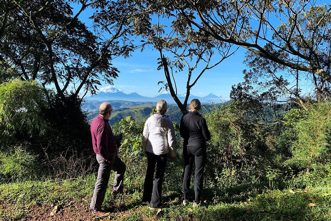 Albertine Rift Virunga Ranges Volcanoes